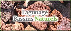 Lagunage & bassins naturels