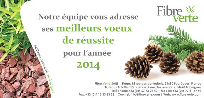 meilleurs voeux 2014