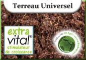 Terreau Universel Extravital